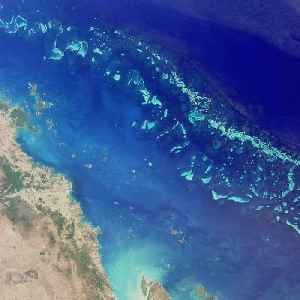 Great Barrier Reef: Coral reef system off the east coast of Australia, World Heritage Site