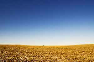 Great Plains: Broad expanse of flat land in western North America