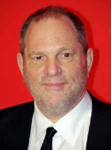 Harvey Weinstein sexual abuse cases