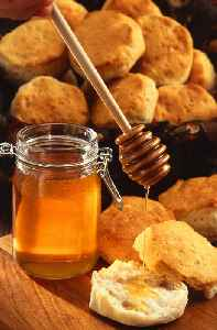 Honey: Sweet food made by bees mostly using nectar from flowers