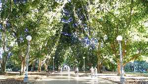 Hyde Park, Sydney: Park in Sydney, New South Wales, Australia