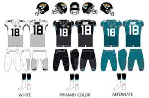 Jacksonville Jaguars: National Football League franchise in Jacksonville, Florida