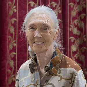 Jane Goodall: British primatologist, ethologist, and anthropologist and graphic designer