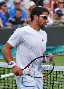 Janko Tipsarević: Serbian tennis player