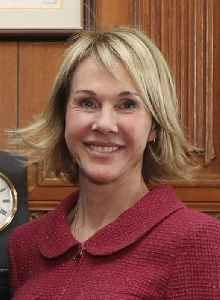 Kelly Knight Craft: American businesswoman and diplomat