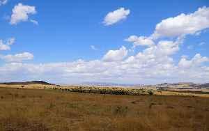 Maasai Mara: Game reserve in Narok County, Kenya