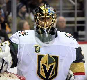 Marc-André Fleury: Ice hockey player