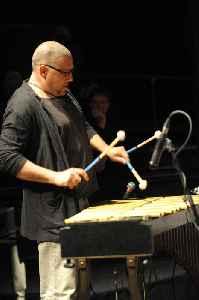 Mark Sherman (musician): American musician