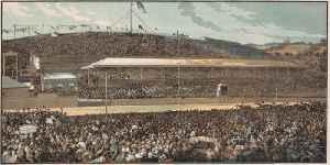 Melbourne Cup: Horse race