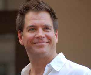 Michael Weatherly: American actor and director
