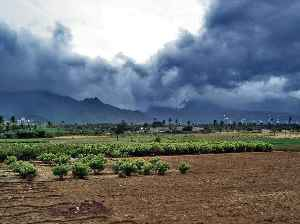Monsoon: Seasonal changes in atmospheric circulation and precipitation associated with the asymmetric heating of land and sea