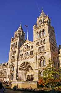 Natural History Museum, London: Natural History Museum in London
