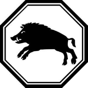 Pig (zodiac): Sign of the zodiac