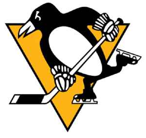 Pittsburgh Penguins: Professional hockey team in the National Hockey League