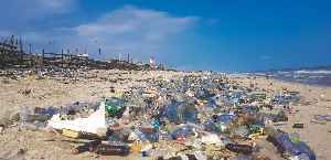 Plastic pollution: Accumulation of plastic products in the environment