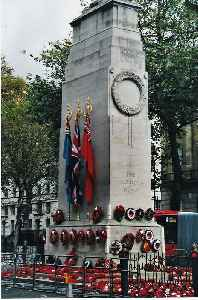 Remembrance Day: Memorial day on 11 November