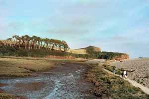 River Otter, Devon: River in Somerset and Devon, England