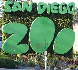 San Diego Zoo: Zoo in Balboa Park, San Diego, California, United States