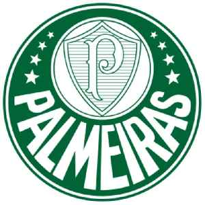 Sociedade Esportiva Palmeiras: Association football club in Brazil