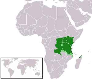 Swahili language: Bantu language, mostly spoken mainly within East Africa, national language in Tanzania and one of the official languages of Kenya