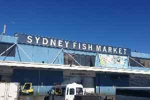 Sydney Fish Market: