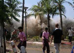 Tsunami: Series of water waves caused by the displacement of a large volume of a body of water