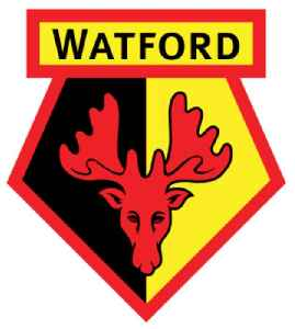 Watford F.C.: Association football club
