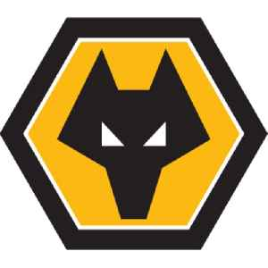 Wolverhampton Wanderers F.C.: Association football club