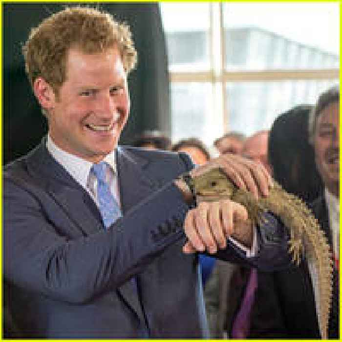 Prince Harry Meets 100-Year-old Lizard In New Zealand