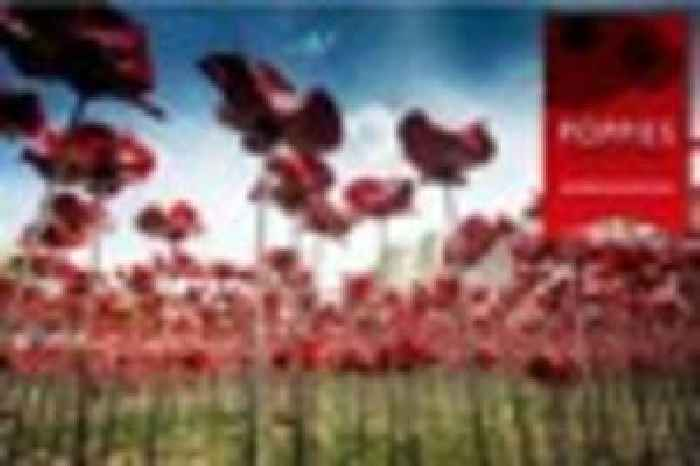 Exhibition Stands Stoke On Trent : Iconic poppies display will boost stoke on trent s uk
