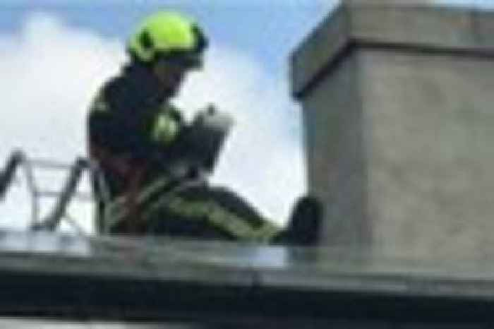 Fire Crew Rescues Seagull Trapped On A Roof At Totnes