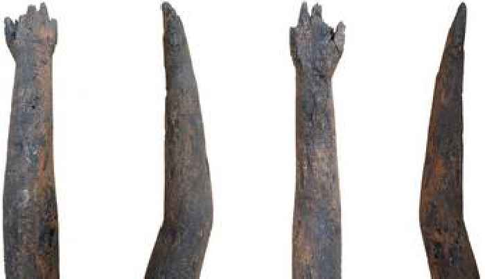 Roman Britain: Wooden arm discovered in Northamptonshire well