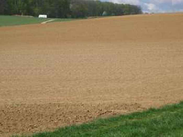 Climate Change May Reduce Ability of Soil to Absorb Water—a Key Store of Carbon Dioxide
