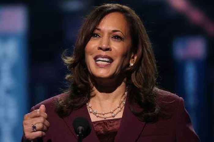 Kamala Harris Accepts Dem Nomination: 'We Can Do Better and Deserve So Much More' (Video)