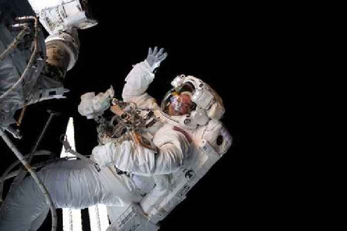 The 'mighty mice' that went to space could help protect astronauts' muscles and bones