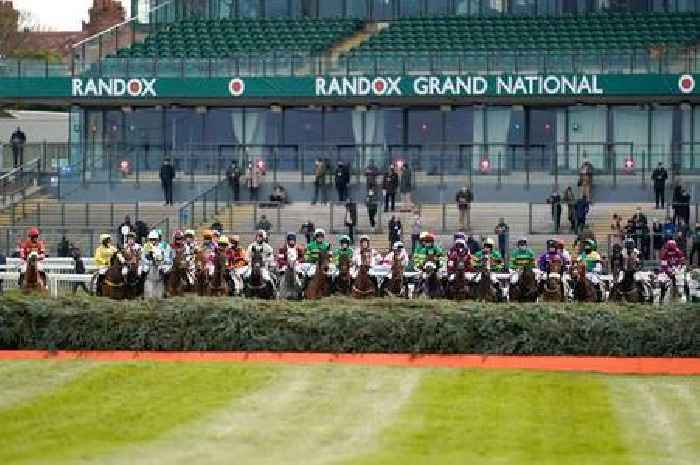 How many horses died at the 2021 Grand National?