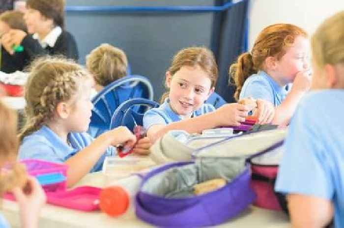 Families in England to find out primary school places today