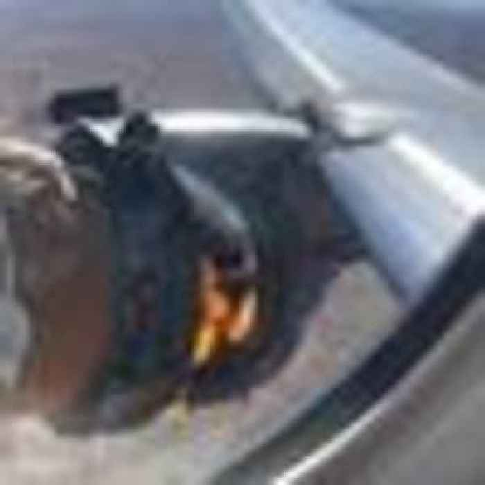 Two passengers sue airline after plane engine catches fire in mid-air
