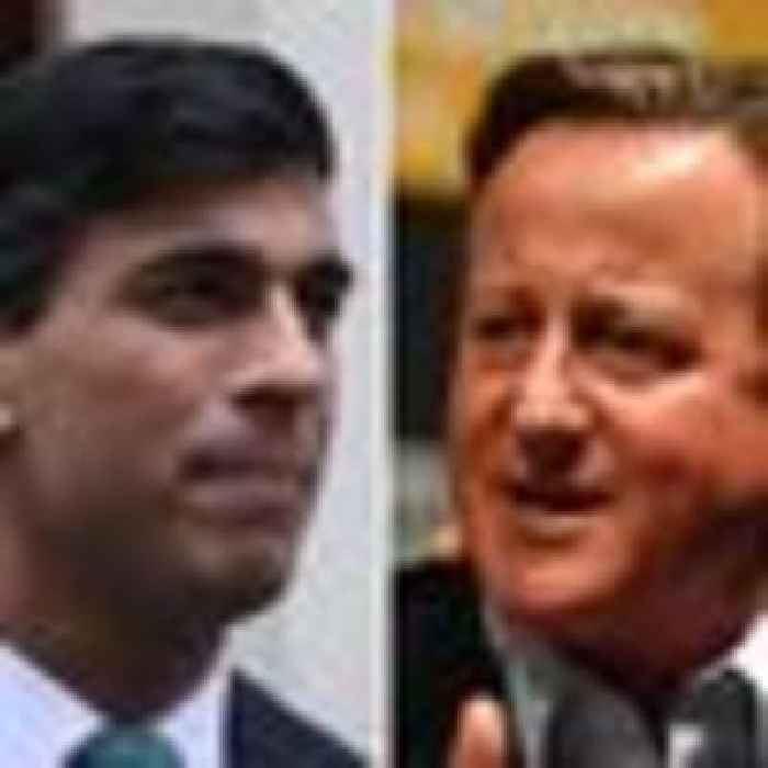 Cameron and Sunak set to be quizzed by MPs over Greensill lobbying controversy