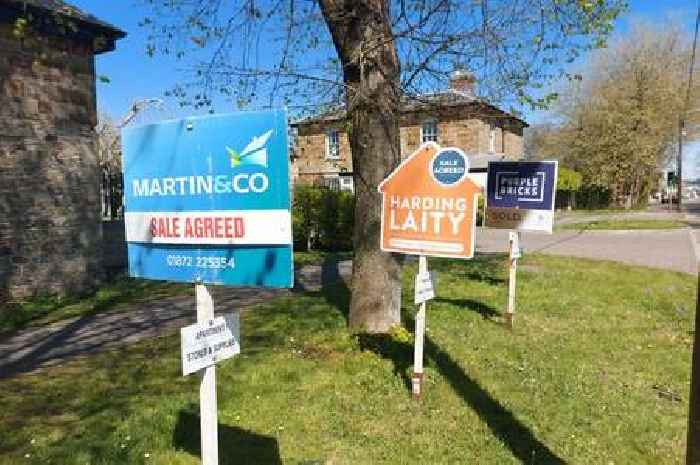 Property searches in Cornwall increase by 140% in two years