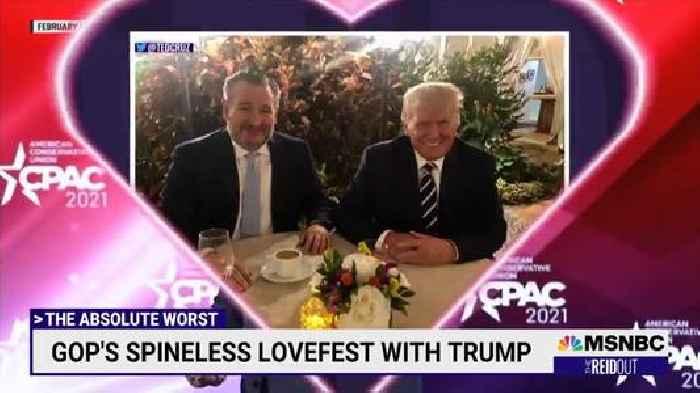 Joy Reid Pays Amusing Tribute to GOP's 'Spineless' Love Affair With Trump (Video)