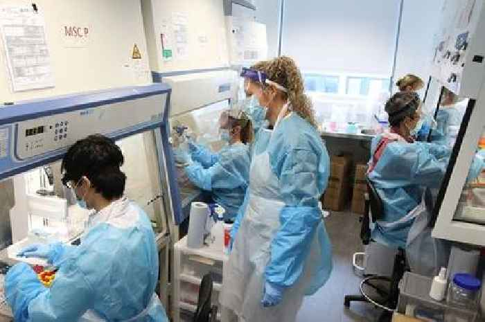 Indian Covid set to be named 'variant of concern' in UK