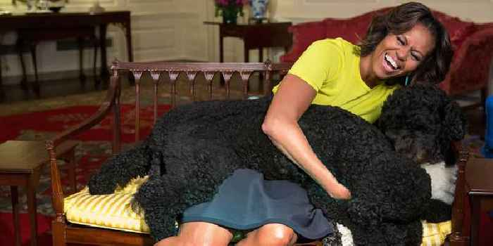 Michelle & Barack Obama Heartbroken Over The Loss Of Family Dog Bo, He Was 'Exactly What We Needed And More Than We Ever Expected'