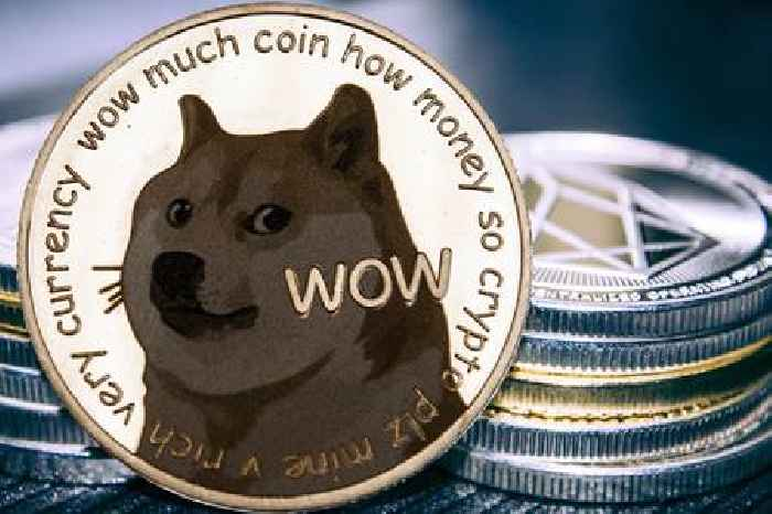 Elon Musk hosts SNL and Dogecoin drops 20%: Here's how to buy the dip in DOGE