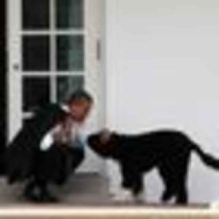 'He had a big bark but no bite': Obama family mourns loss of pet dog Bo