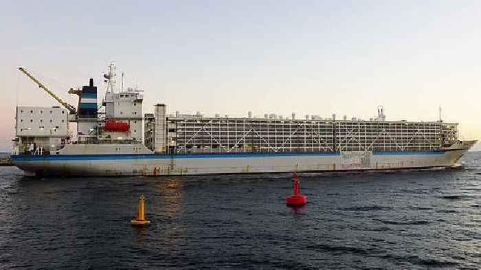 Spain Declines EU Parliament's Invitation To Clear Livestock Ship Affair