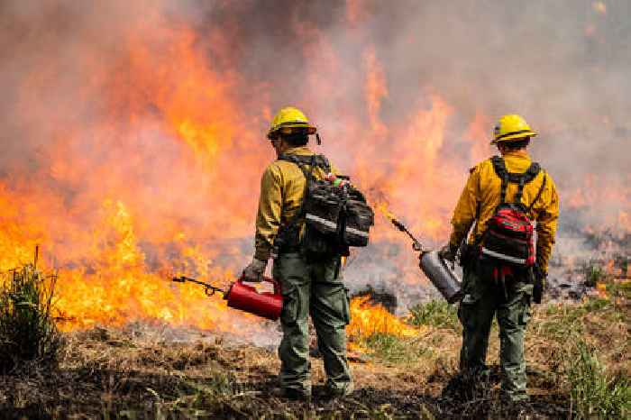 Arizona Boy, 11, Faces Felony Charges for Starting Brush Fire, Causes $30,000 Damage