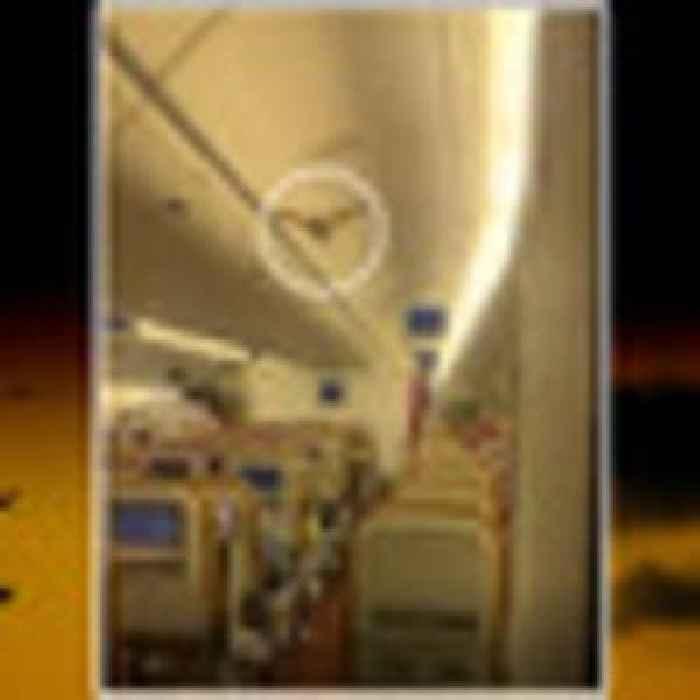 Stowaway bat causes Air India flight to return to New Delhi