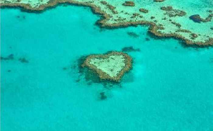 Projected Acidification Of Great Barrier Reef Could Be Offset By Ten Years
