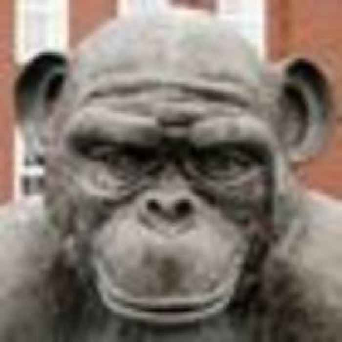 Hartlepool's monkey statue to be given 'explanatory sign' to avoid offending visitors